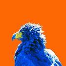 Plucky plumage by VrijFormaat