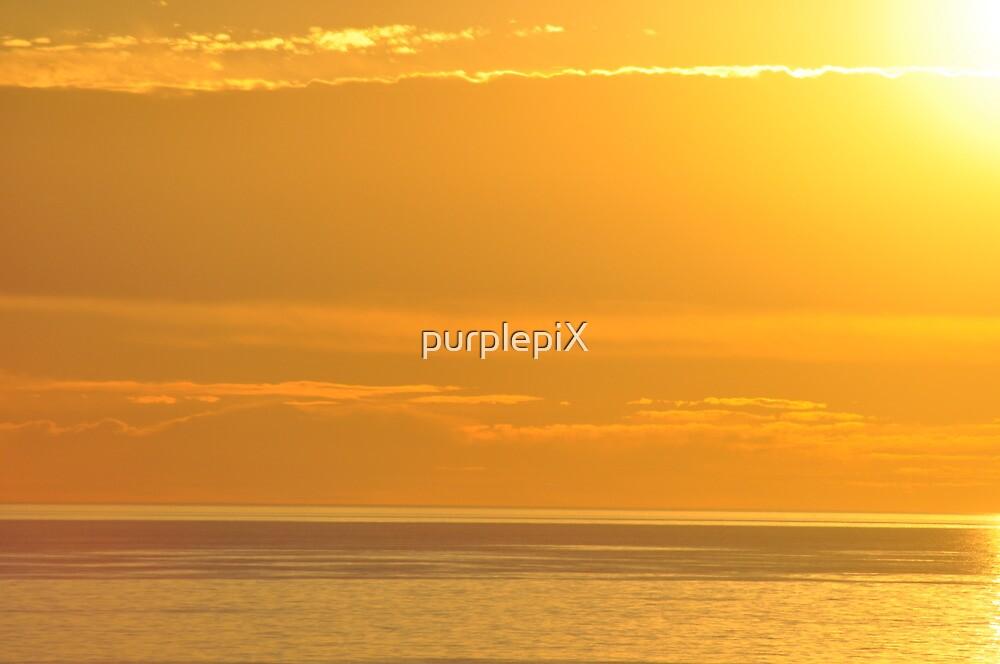 sullies sunset 2010 by purplepiX