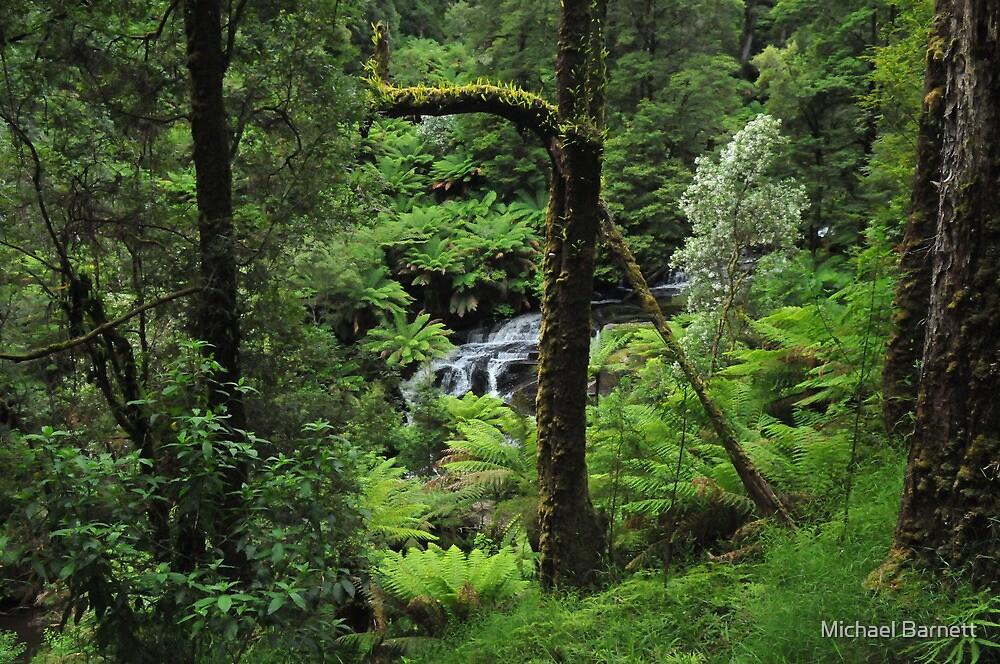 Triplet Falls - Otway Ranges by Michael Barnett