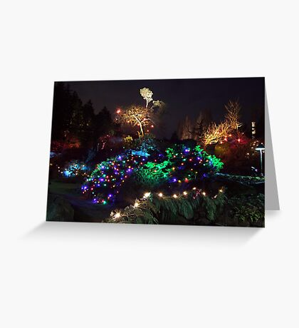 Night In The Sunken Garden (9) Greeting Card