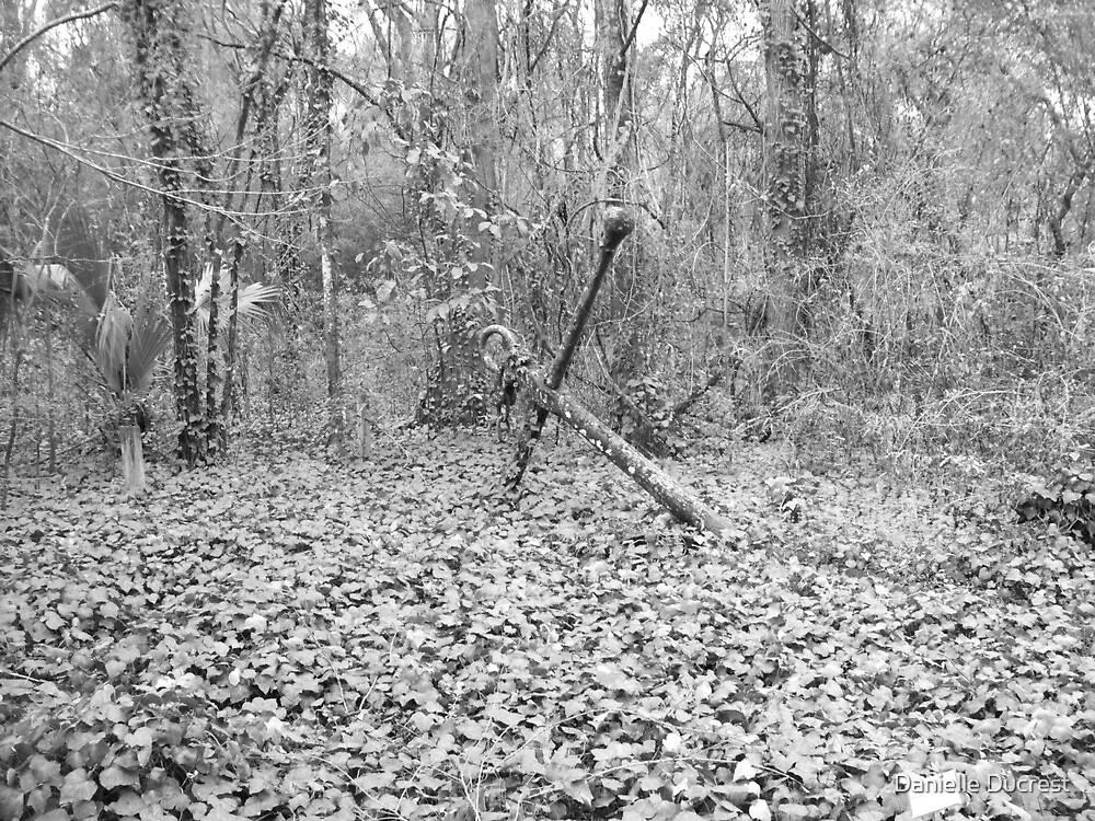Lay Anchor - Gainesville, FL by Danielle Ducrest