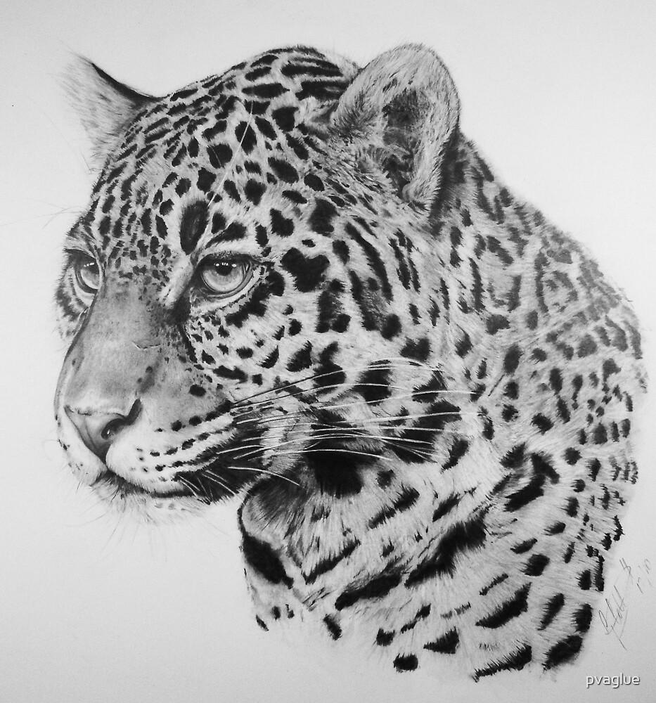 Jaguar by pvaglue