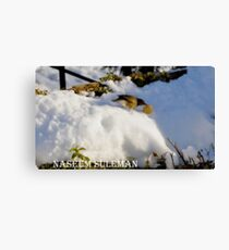 BIRD EATING Canvas Print