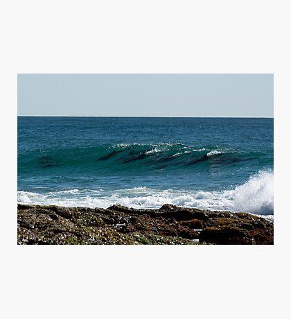 Dolphin Magic Photographic Print