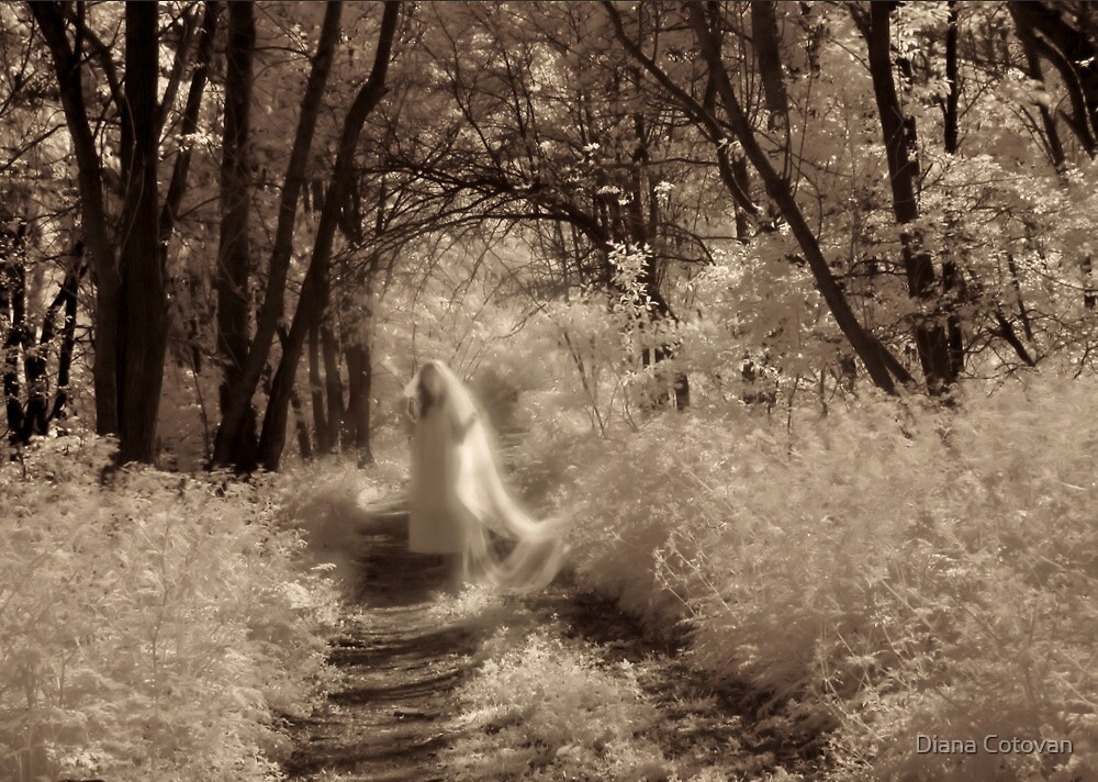 ghost reveries i by Diana Cotovan