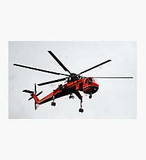 The Flying Gnat Photographic Print