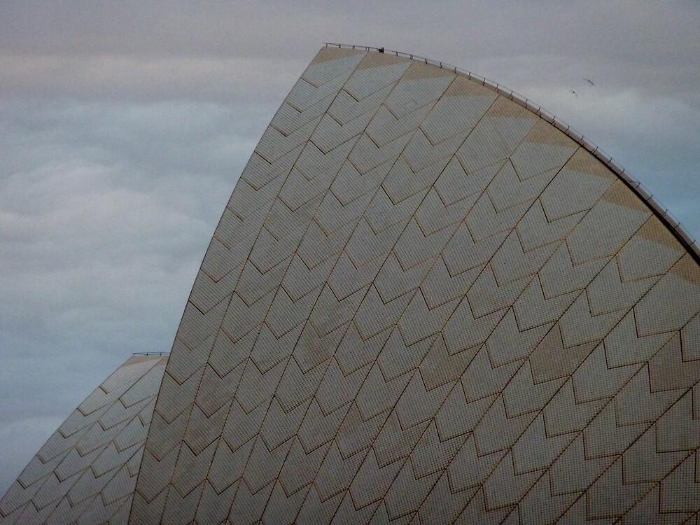 Not the Opera House again. - Opera House, Sydney, NSW by RainbowWomanTas
