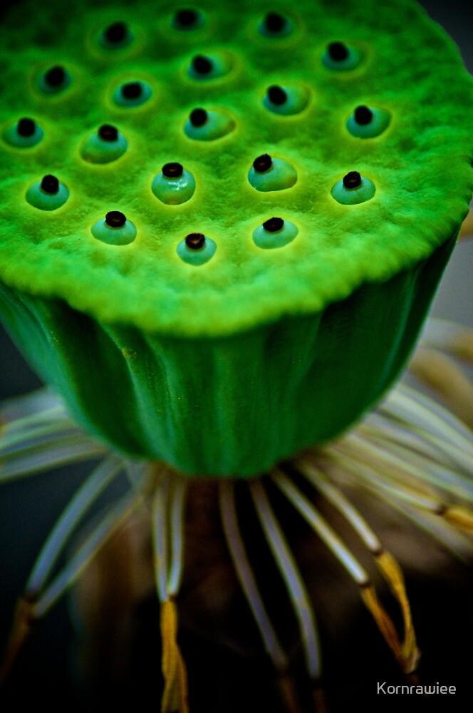 Her kids is green... by Kornrawiee