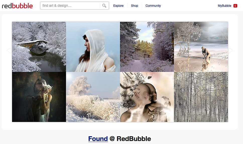 Winter's White - 12 December 2010 by The RedBubble Homepage
