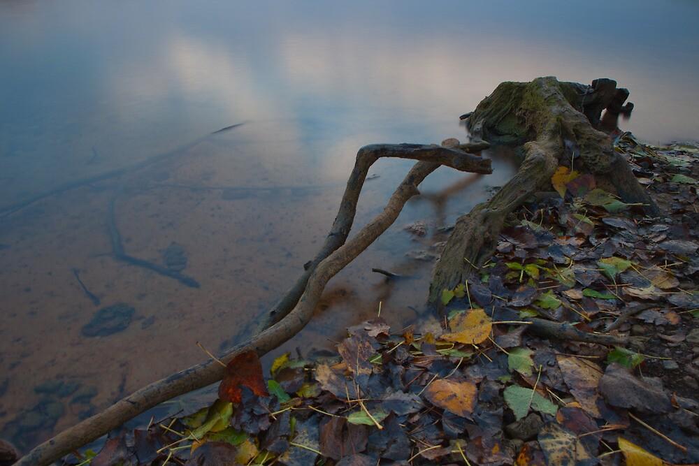 Sunrise, Rutland Water. by Nick Atkin