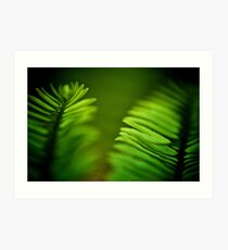 Delicate green leafs...Got 2 Featured Works Art Print