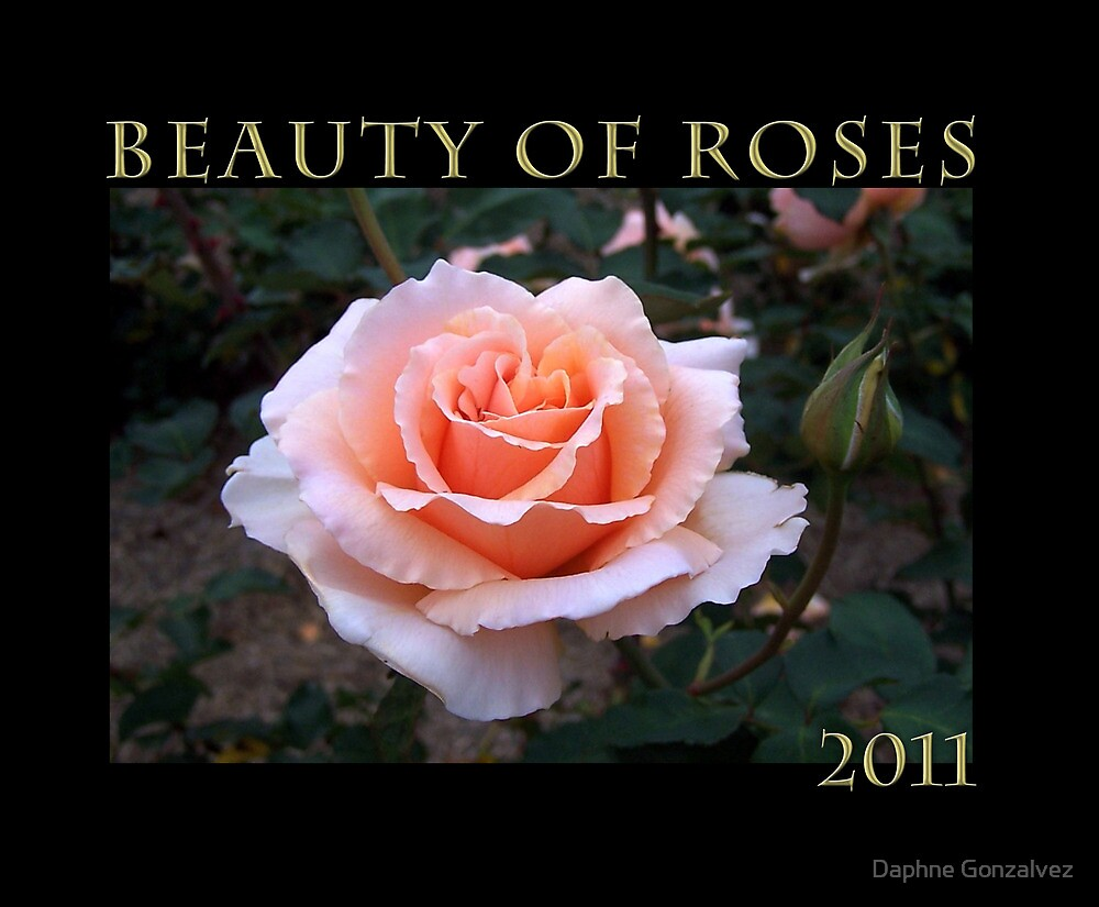 The beauty of roses  by Daphne Gonzalvez