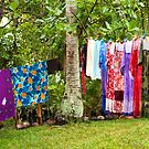 Laundry on the Line by Mia Rose