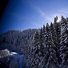 Austrian Alps - The picturesque estate by adrianfowlers
