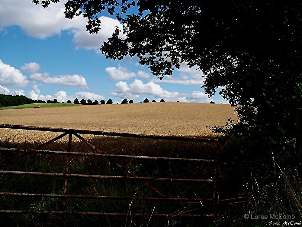 English Countryside by © Loree McComb