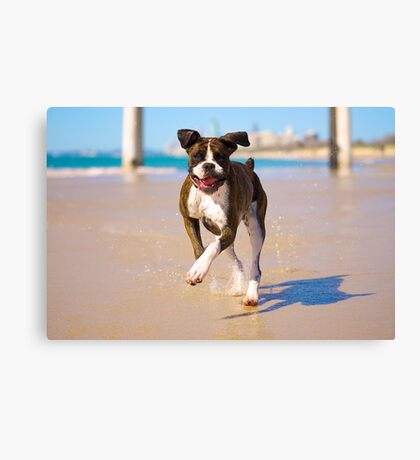 Carla running on the beach Canvas Print