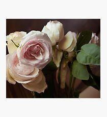 Melancholy Roses Photographic Print