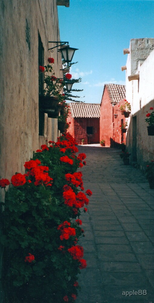 Santa Catalina Monastery - Arequipa, Peru by apple88