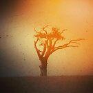 The Rihanna Tree by TheTeaFairy