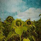 Van Gogh Inspired Sunflower Field  by TheTeaFairy
