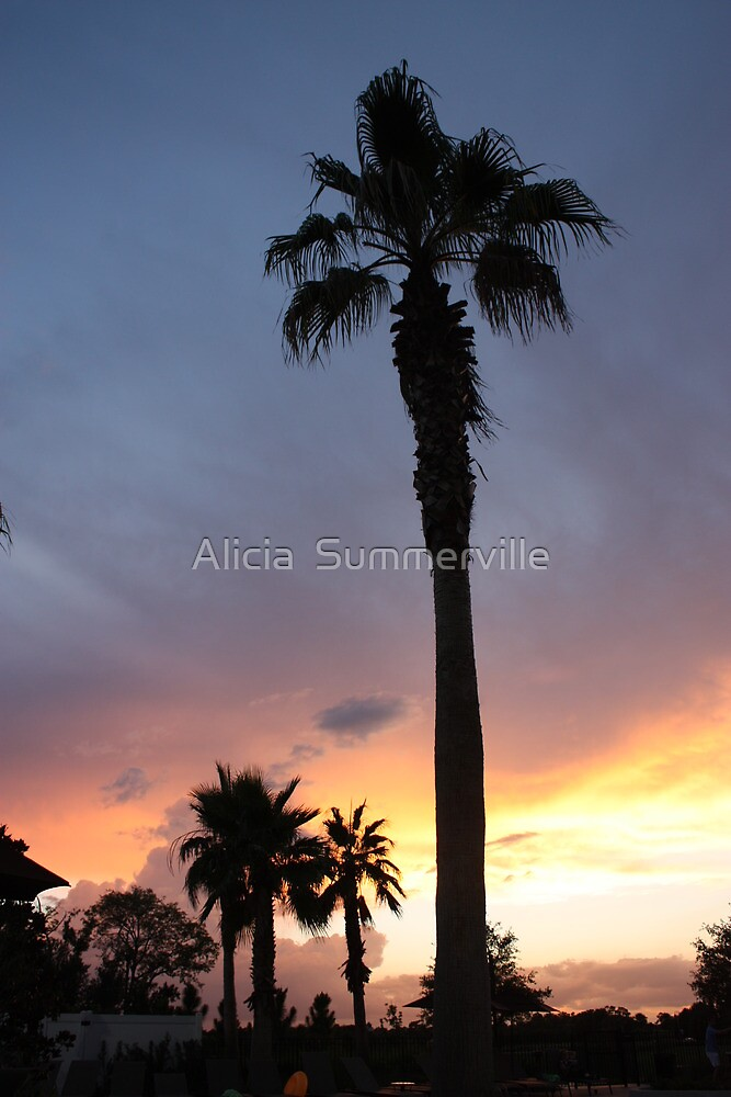 Sunset over Orlando by Alicia  Summerville