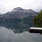 Still Waters, Linnet Lake by Jann Ashworth