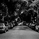 Frenchmen Street - New Orleans, Louisiana by jscherr