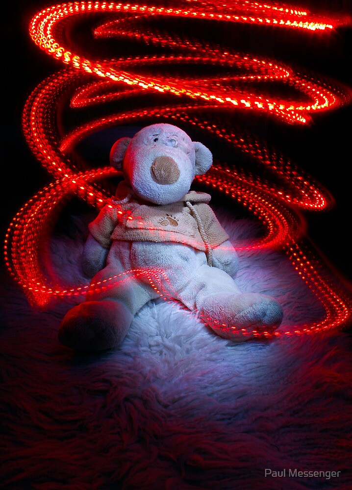Old Teddy ravaged by our dogs by Paul Messenger