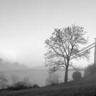 Clifton Suspension Bridge by Steve  Liptrot