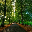 Batsford  by Billy Hodgkins