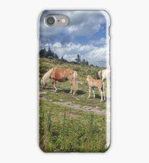 Hiking Grayson Highlands iPhone Case/Skin