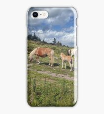 Hiking Grayson Highlands iPhone Case/Skin