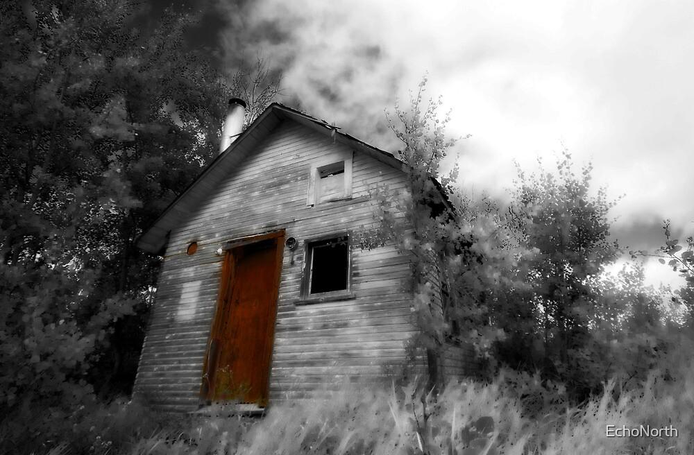 Red Door by EchoNorth
