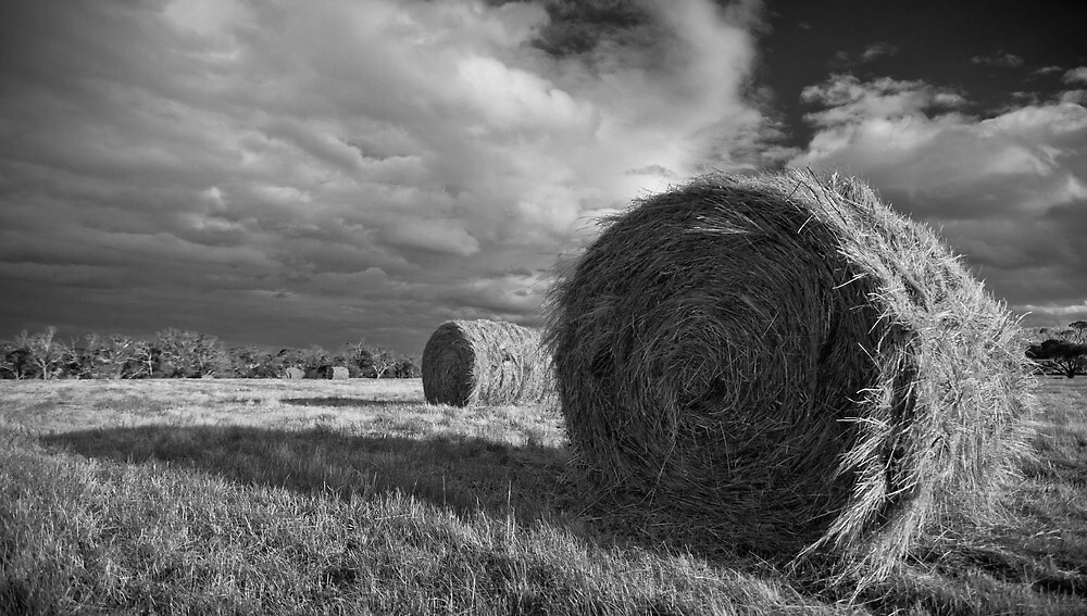 a rural classic by Glen Barton