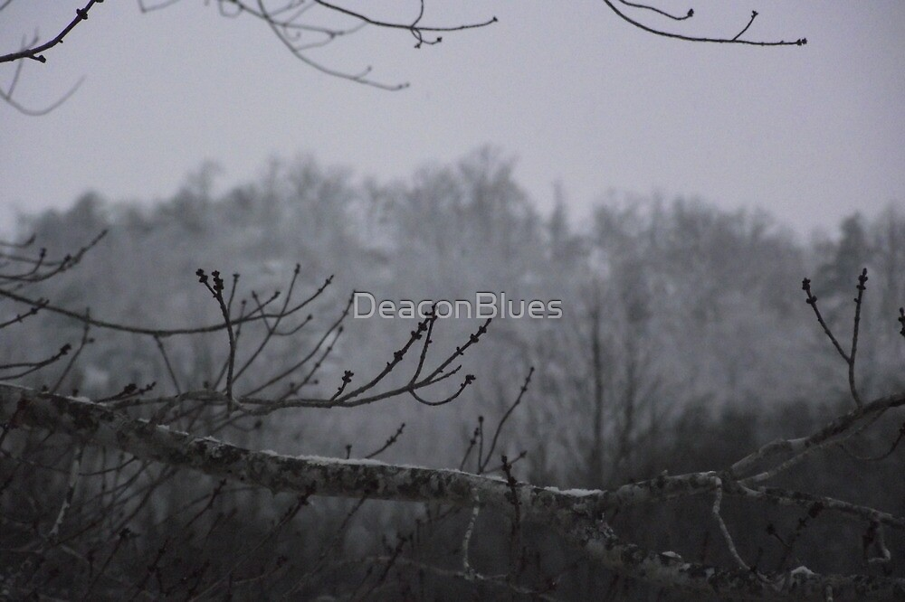 More Snow by DeaconBlues