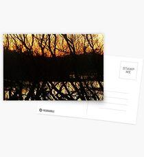 dark horizon at dusk Postcards