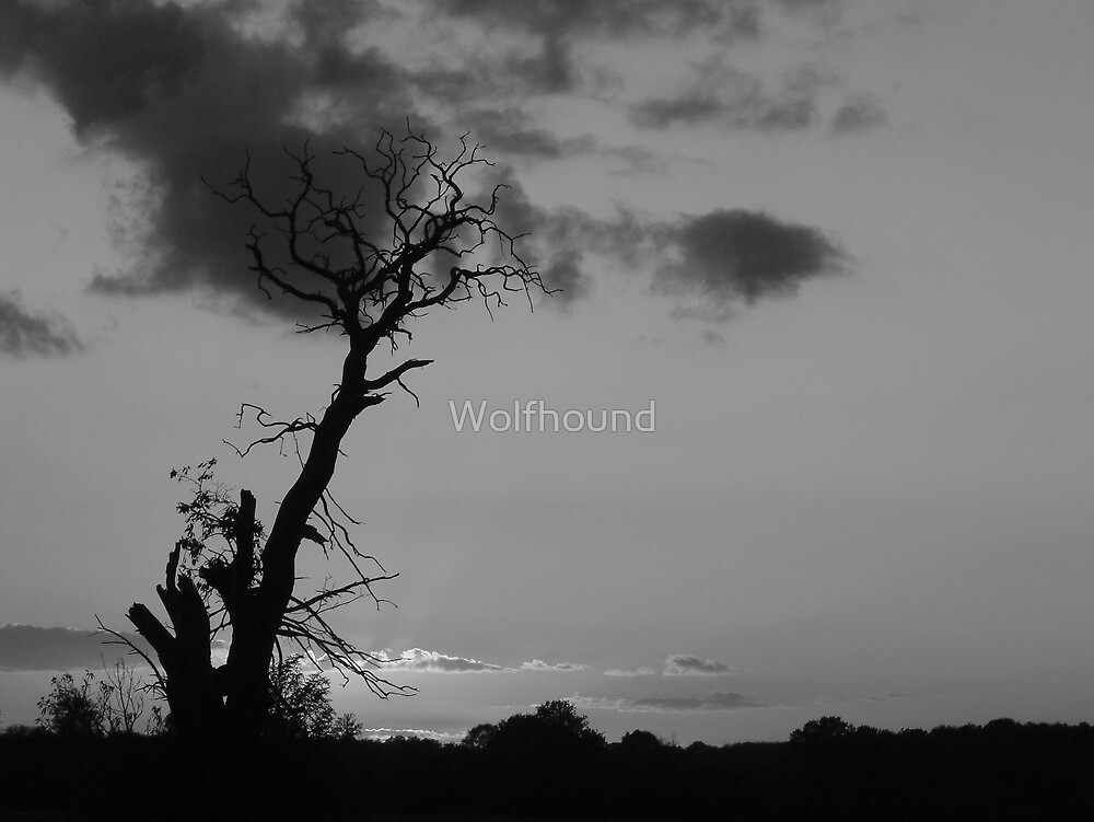 Stand Proud by Wolfhound