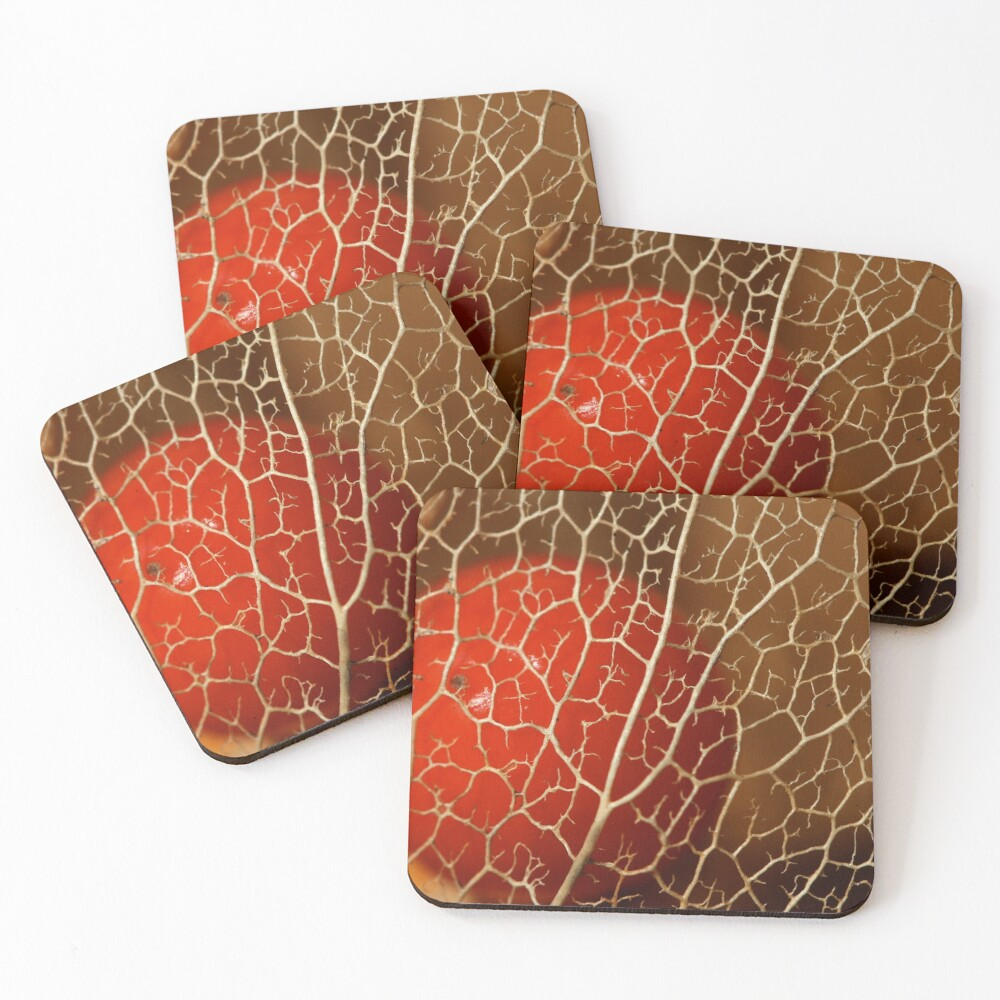 so close to the heart Coasters (Set of 4)