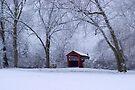 Snow Adorns The John Burrows Covered Bridge by Gene Walls