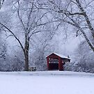 Snow Adorns The John Burrows Covered Bridge by Gene Walls