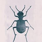 Beetle, One by Sybille Sterk