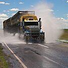 Cattle Truckin by David Haworth