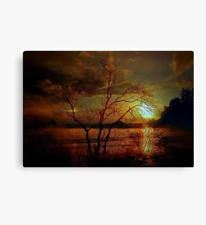 THE COASTAL TREE Canvas Print