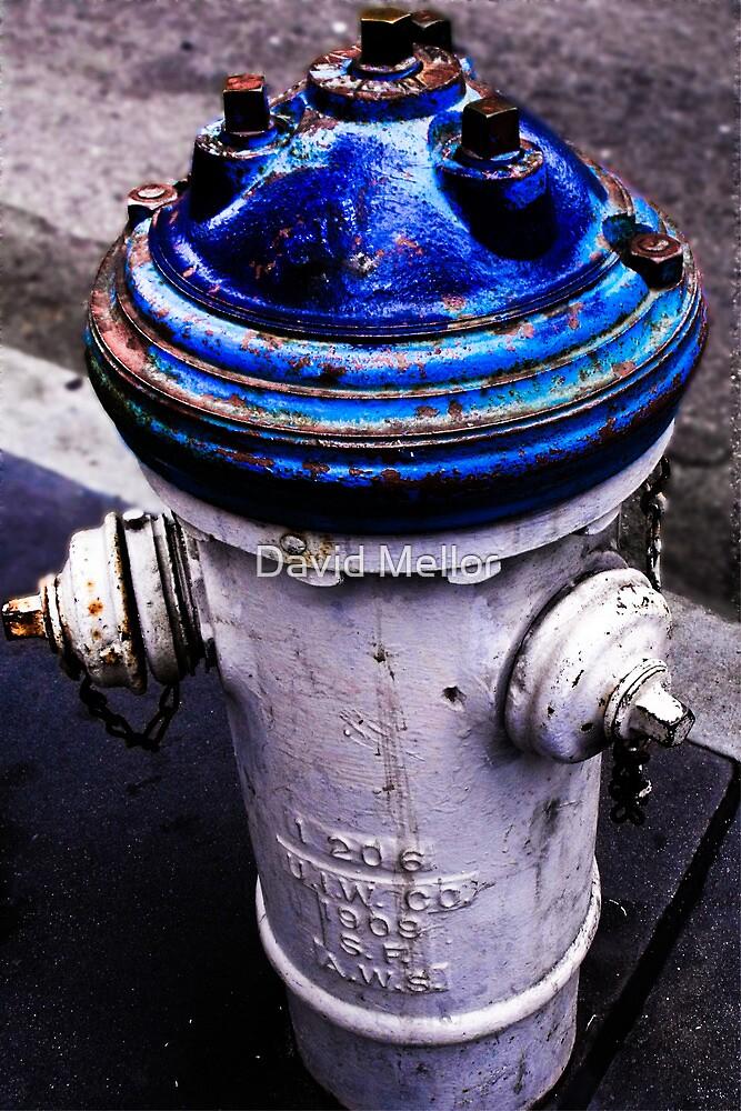 San Francisco Fire Hydrant by David Mellor