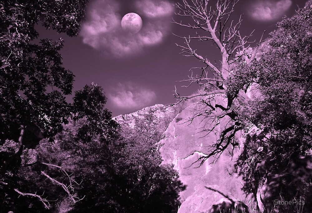 Moonrise in the Canyon by StonePics