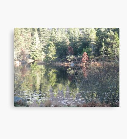 Silent Valley - Co. Down Canvas Print