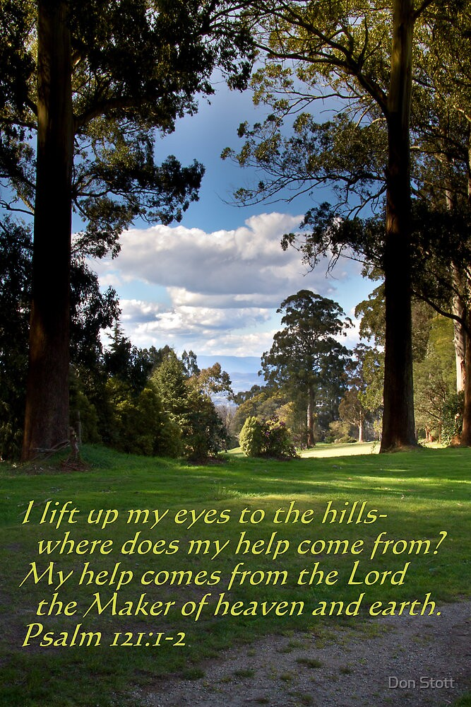 I Lift Up My eyes by Don Stott