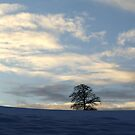 In the bleak midwinter by TriciaDanby