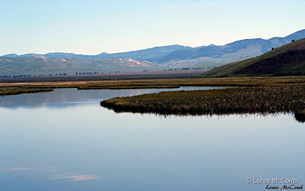 Flat Creek by © Loree McComb