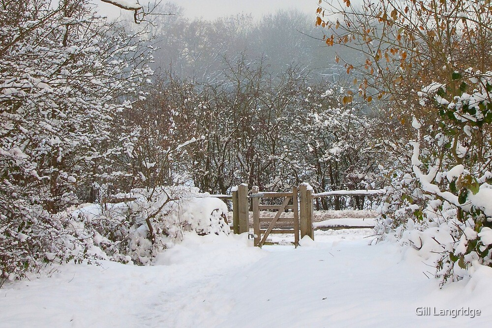 Snowy Gate by Gill Langridge